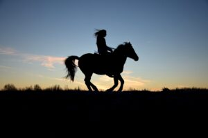 ridning_ride_natur_oplevelse