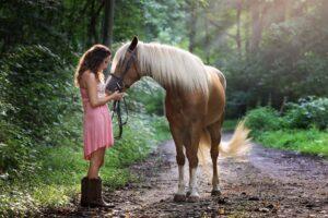hest_skov