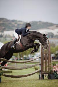 hestepige
