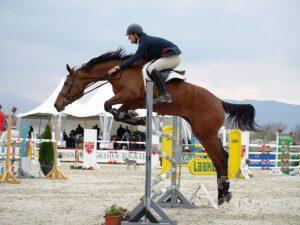 hesteryg