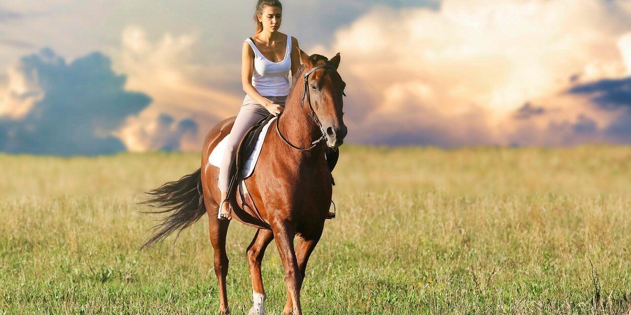 Frigør tid til at bruge på hesten