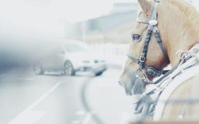 Bilen – den teknologiske tids version af en hest
