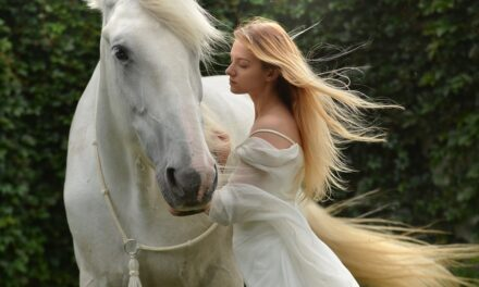 Brug tid på din hestehobby