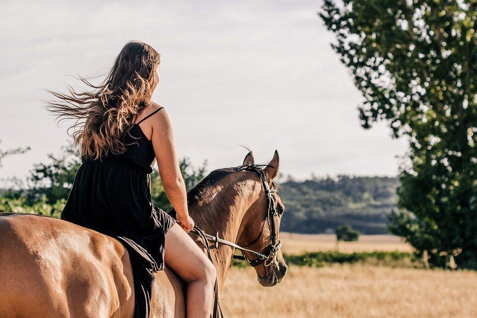 Giv dig selv og din hest den bedste sommerferie