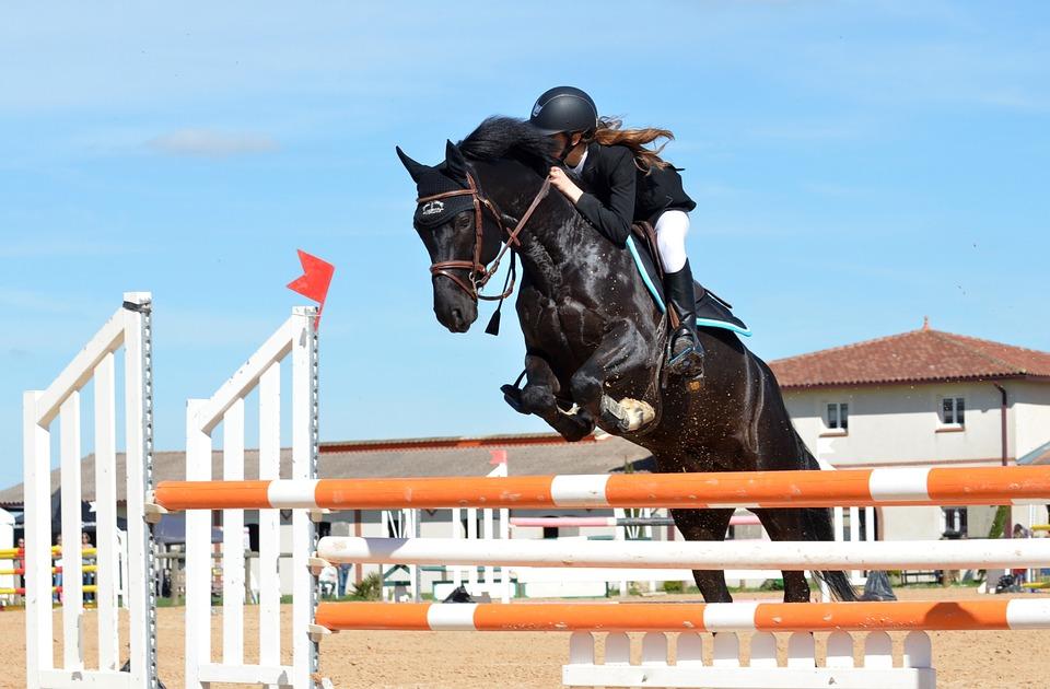 Hest som springer