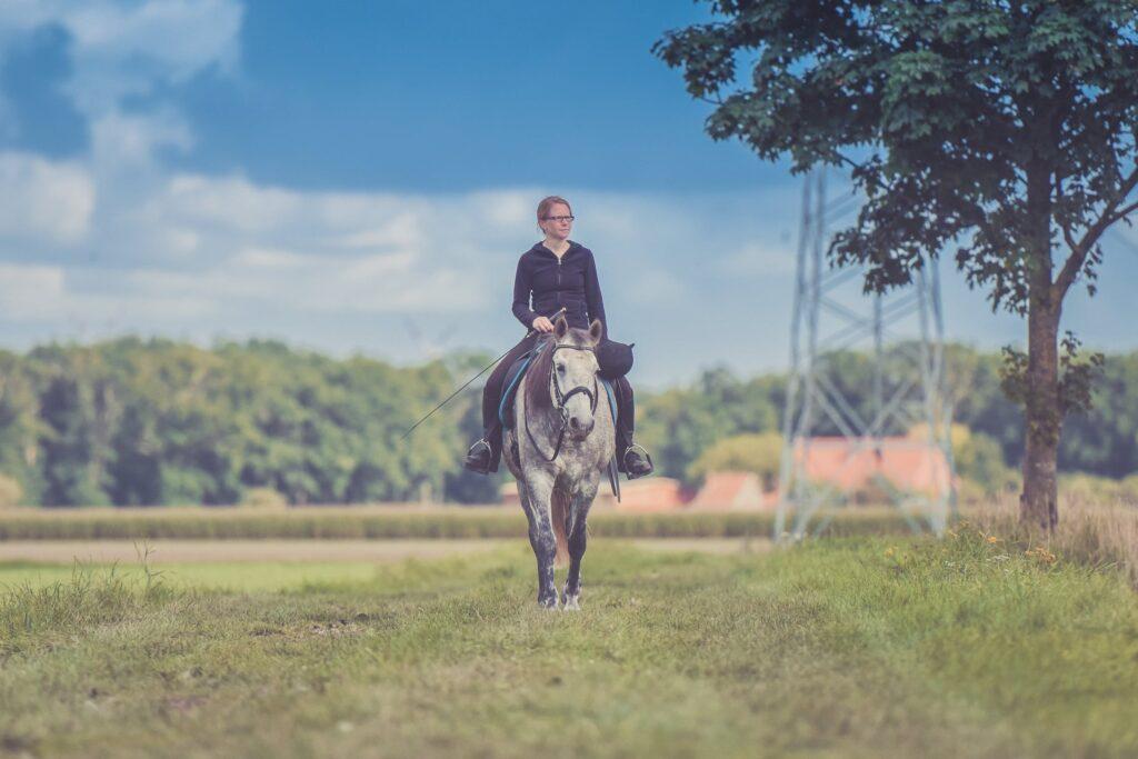 Hest-rytter
