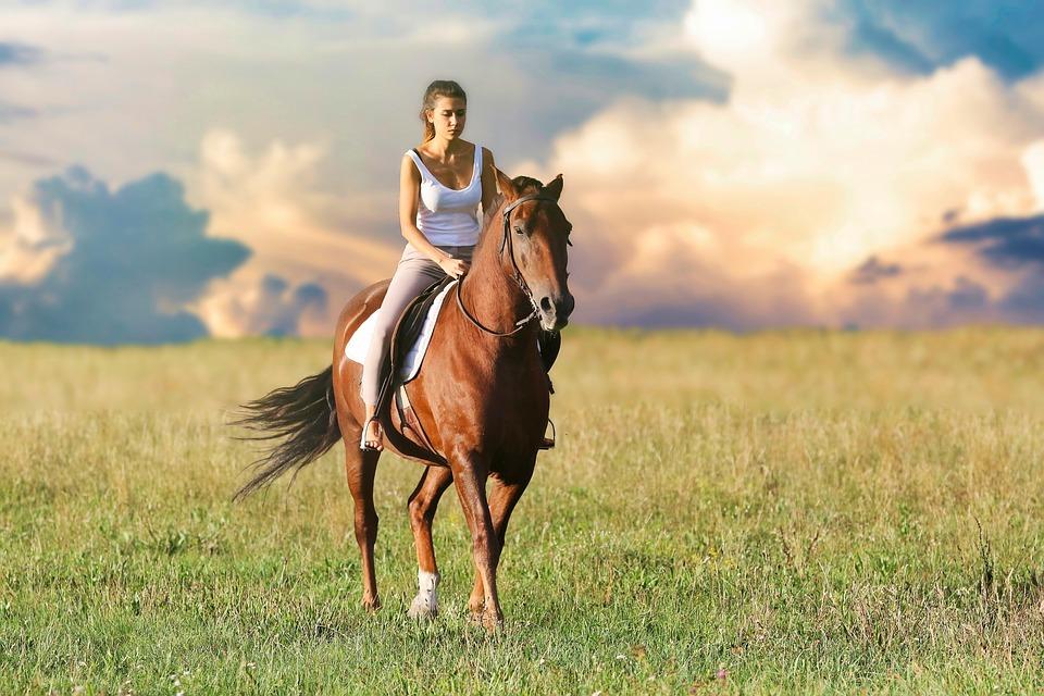 Kvinde på hest