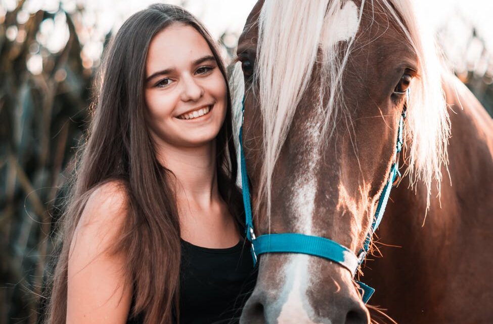 Start en egen hjemmeside om heste