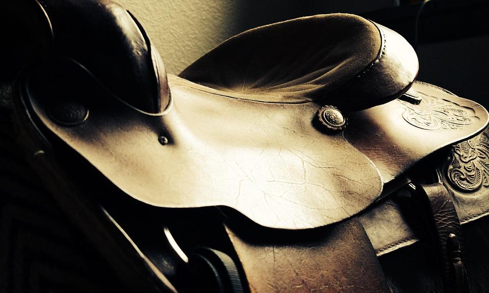 hest_og_sadel