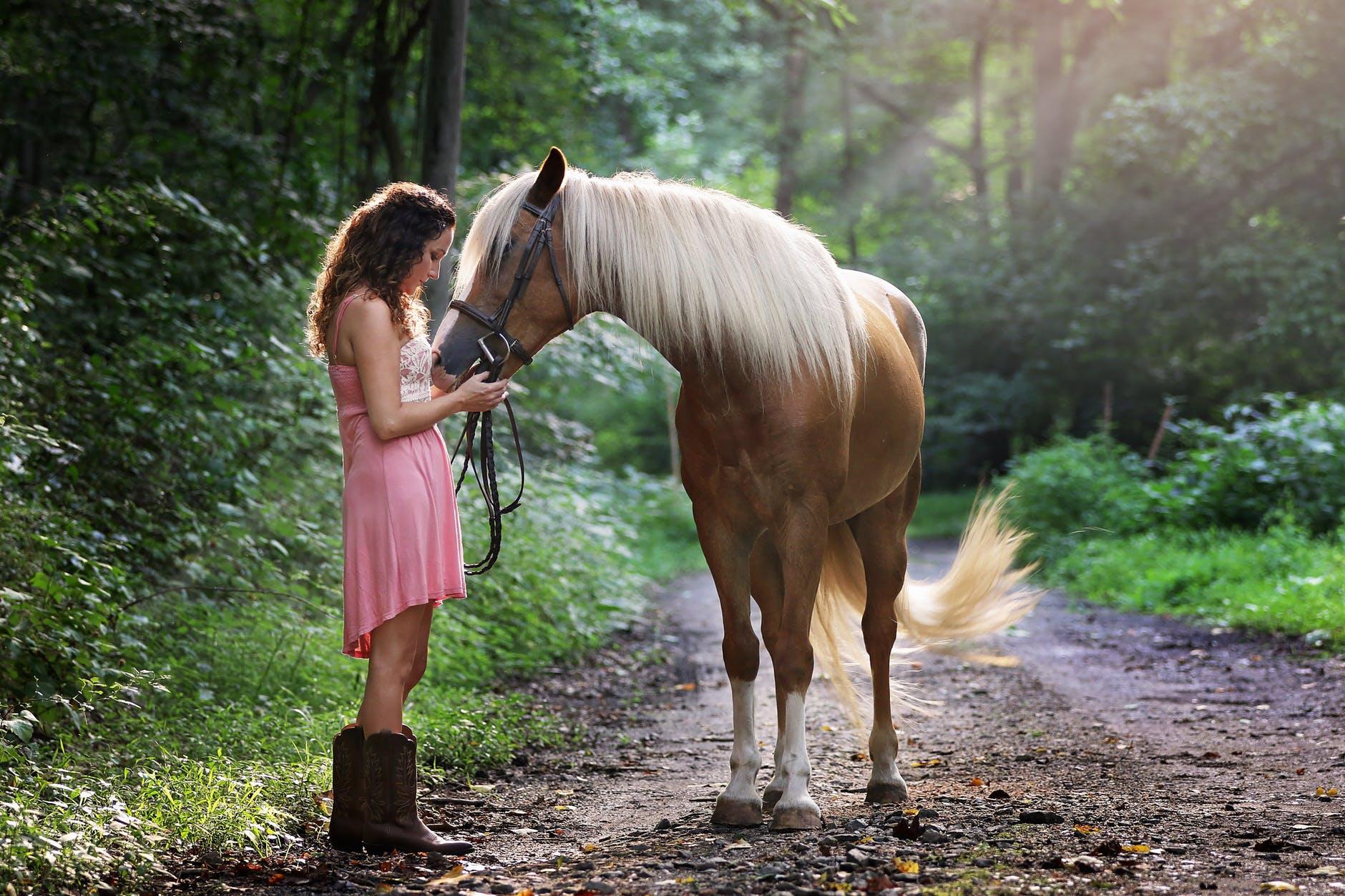 fri hest