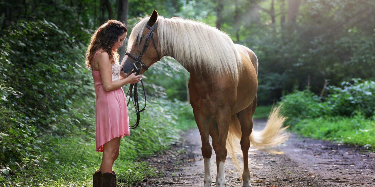 Tag dig godt af din hest