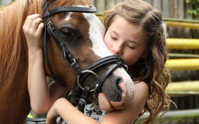 Køb dit hesteudstyr online