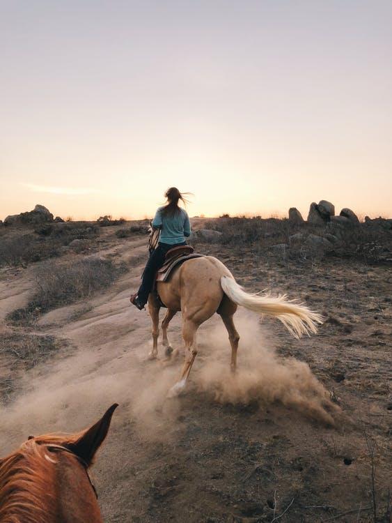 Dame på hest