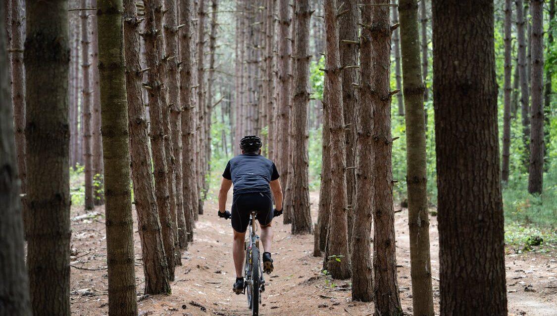 En hyldest til cykelferien