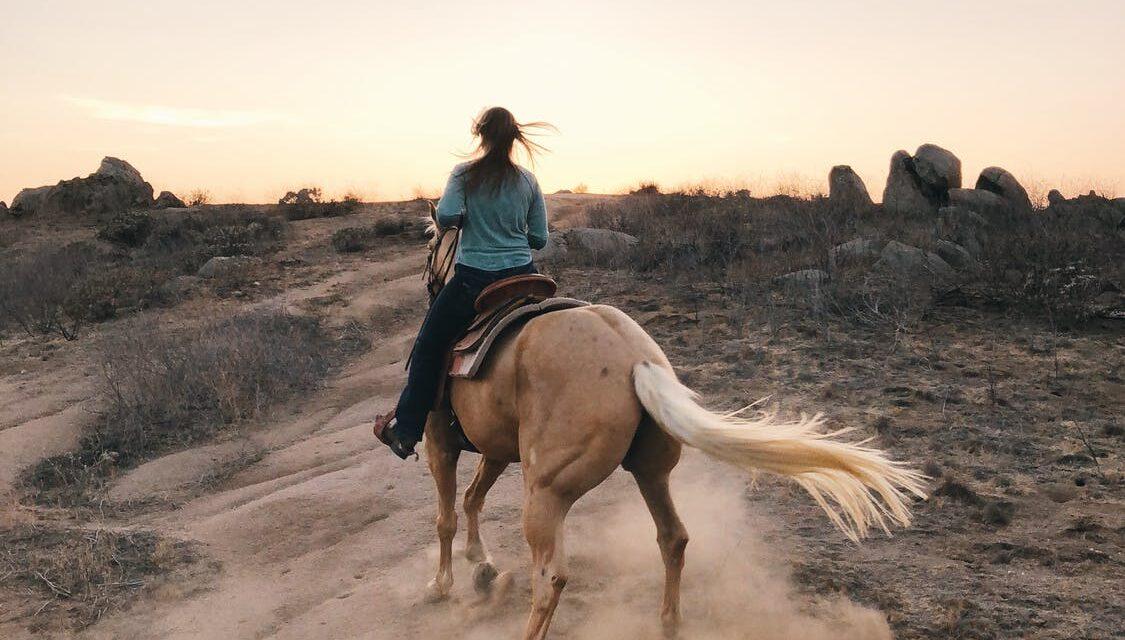 Sådan får du mest ud af din tid med hestene