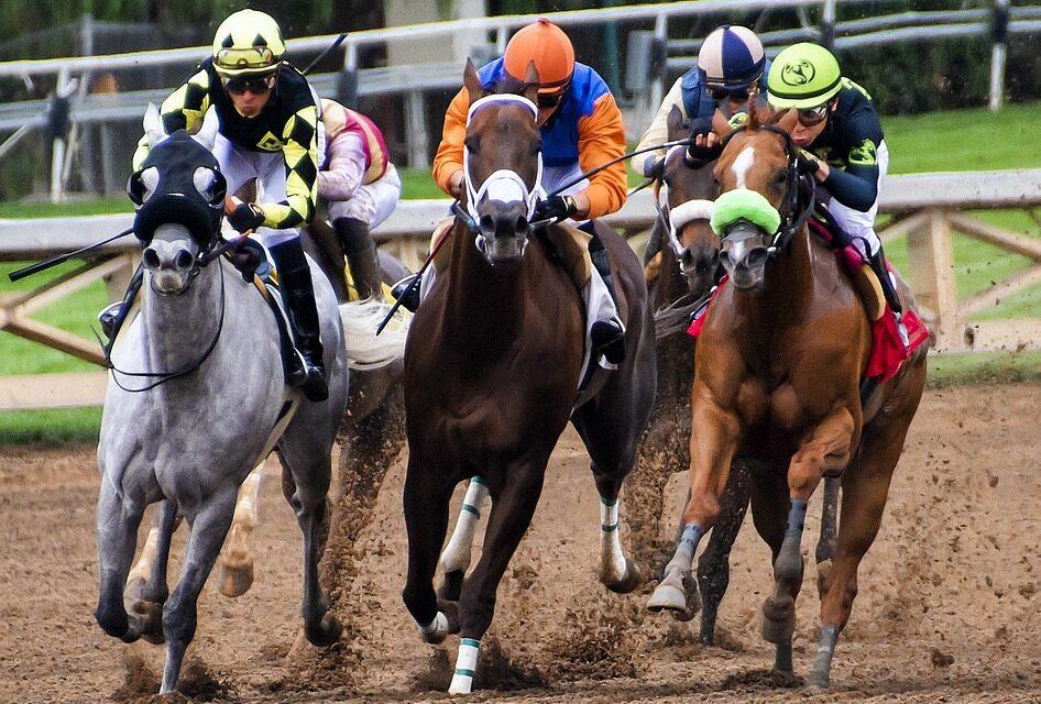 Odds på hestevæddeløb