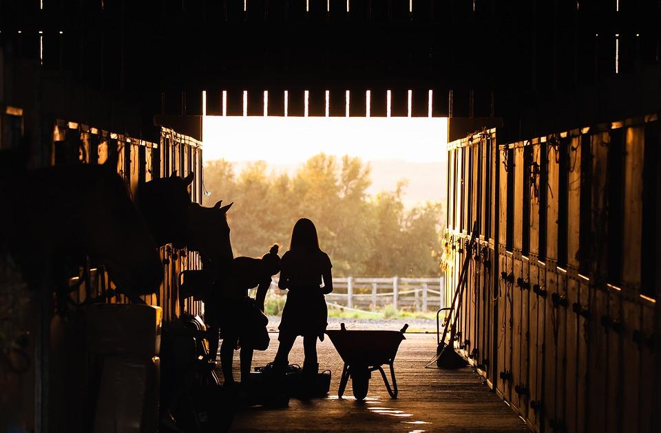 gør dine heste klar